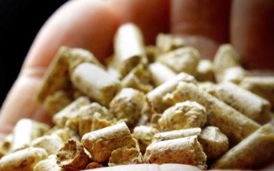 Remica realiza la mayor instalación de biomasa